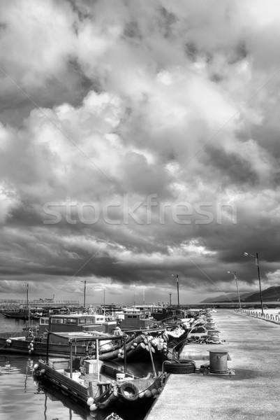 Dramatic landscape Stock photo © elwynn