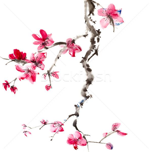 Kínai festmény virágok szilva virág fehér Stock fotó © elwynn