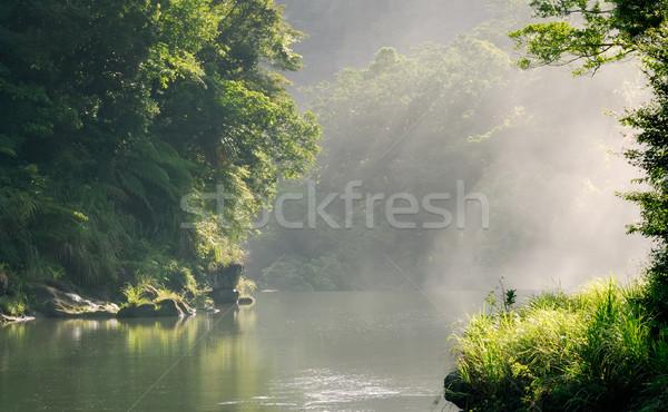 Huzurlu orman güneş ışığı güzel manzara su Stok fotoğraf © elwynn