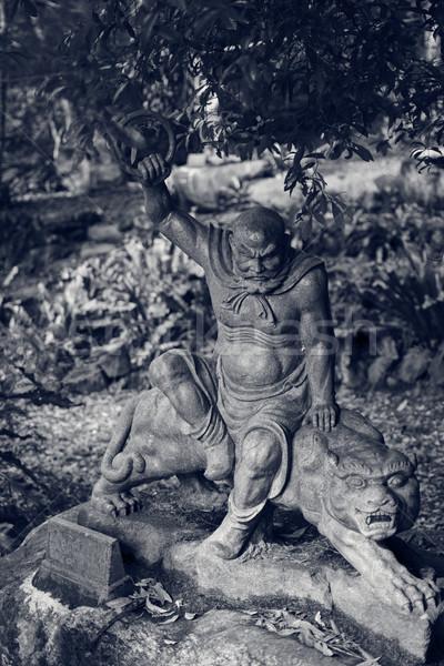 像 古い 森林 台湾 アジア 庭園 ストックフォト © elwynn