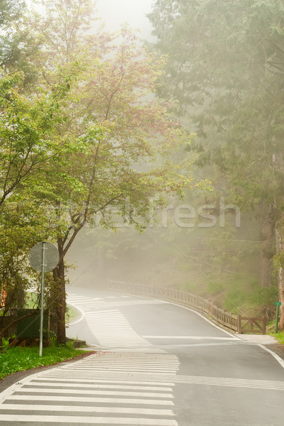 Mist on road Stock photo © elwynn