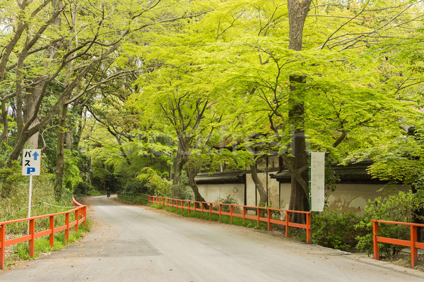 boulevard near Shimogamo Shrine Stock photo © elwynn