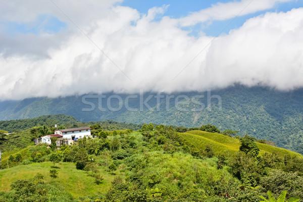 Piękna Tajwan asia wiosną tle Zdjęcia stock © elwynn