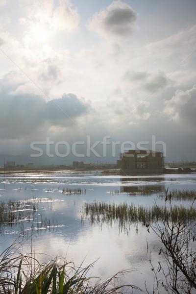 пейзаж болото выстрел Тайвань Азии небе Сток-фото © elwynn