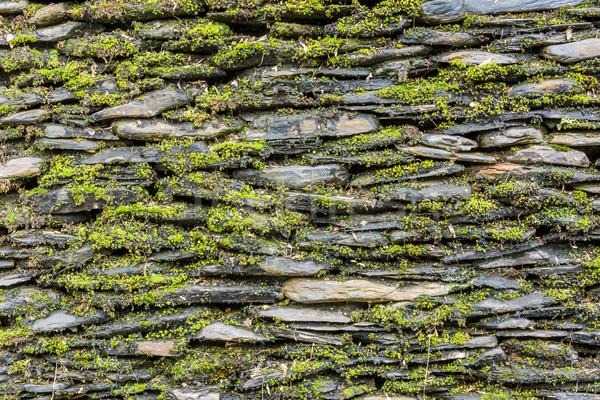 Muro di pietra verde muschio muro giardino sfondo Foto d'archivio © elwynn