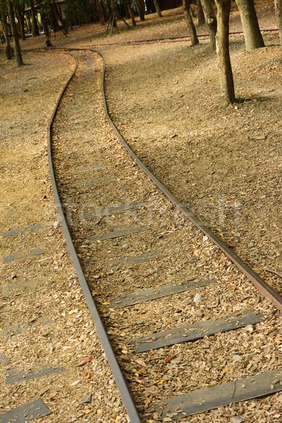 Orman demiryolu atış ormancılık kültür bahçe Stok fotoğraf © elwynn
