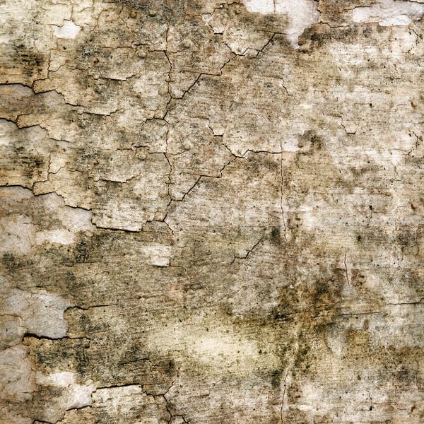 Grunge parede textura interior velho sujo Foto stock © elwynn