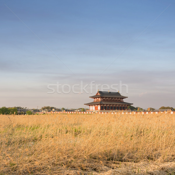 Nara Imperial Palace Stock photo © elwynn