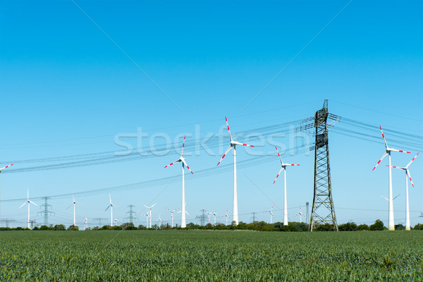 Wind power plants and power transmission lines Stock photo © elxeneize