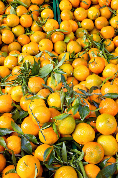Fresh clementines with green leaves Stock photo © elxeneize