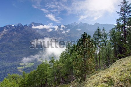 Beautiful morning in the Valais Stock photo © elxeneize