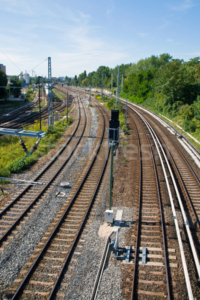 Railroad tracks with trees  Stock photo © elxeneize