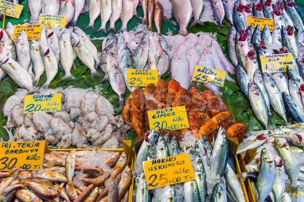 Different kinds of fish for sale Stock photo © elxeneize