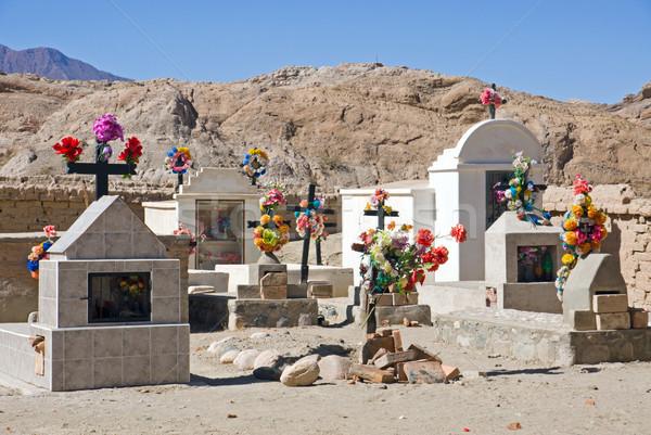 Cementary in northern Argentina Stock photo © elxeneize