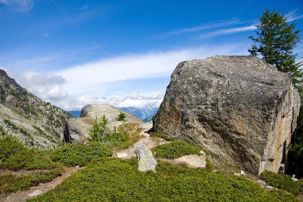 Landscape in the Valais Stock photo © elxeneize