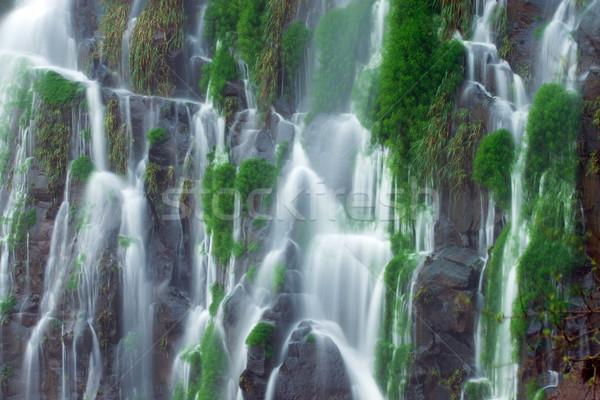 Részlet vízesés bemozdult természet energia erő Stock fotó © elxeneize