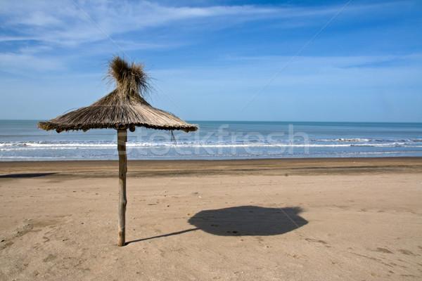 Deserted beach in Argentina Stock photo © elxeneize