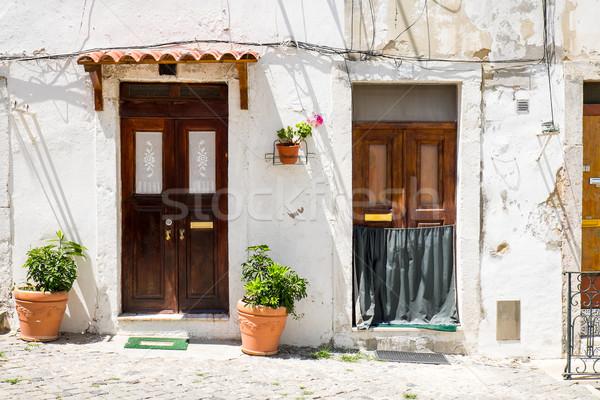 Two entrance doors in Lisbon Stock photo © elxeneize