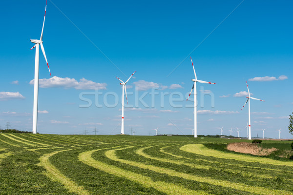 Windwheels in a mowed field Stock photo © elxeneize
