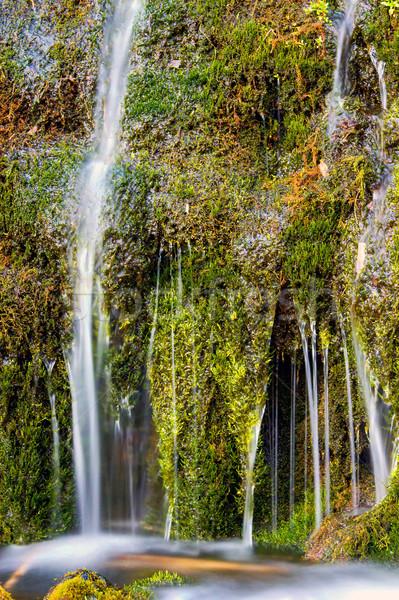 Részlet kicsi vízesés völgy Izland erdő Stock fotó © elxeneize