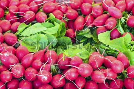 Radish for sale at a market Stock photo © elxeneize