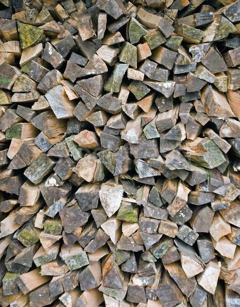 Boglya tűzifa idősebb textúra erdő természet Stock fotó © elxeneize