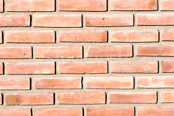 Background from a red brickwall Stock photo © elxeneize