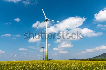 Windwheels in a field of rapeseed Stock photo © elxeneize