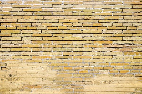 Old brown brickwall Stock photo © elxeneize