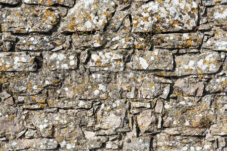 áspero parede naturalismo pedra castelo tijolo Foto stock © elxeneize