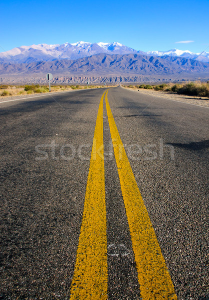 Road in the province of Salta Stock photo © elxeneize
