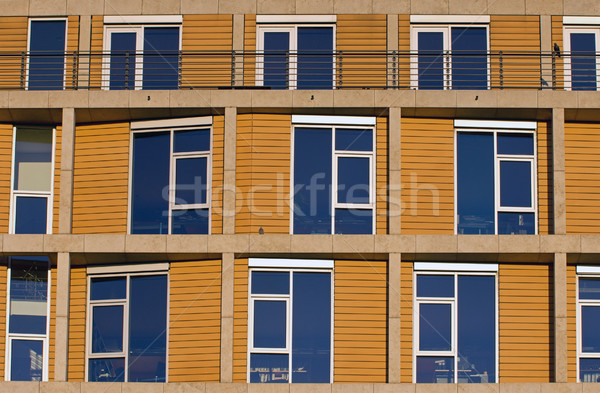 Facade of a modern office building Stock photo © elxeneize