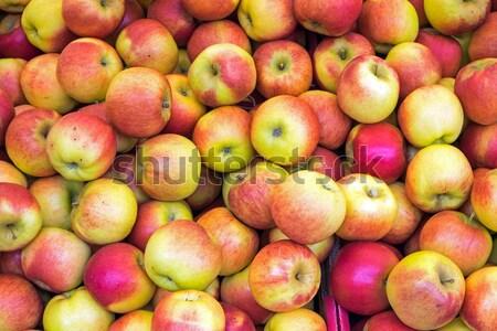 Mercado fresco maduro comida fruto laranja Foto stock © elxeneize