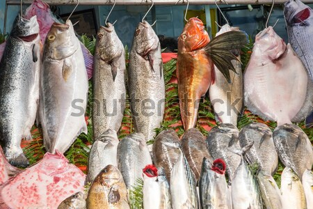 Fresh fish hanging on hooks Stock photo © elxeneize