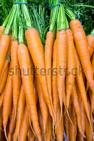 Carrots at the grocery Stock photo © elxeneize