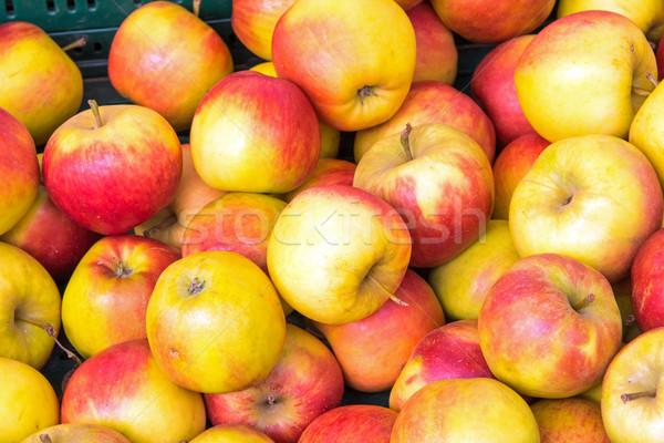 赤 黄色 リンゴ 販売 市場 フルーツ ストックフォト © elxeneize