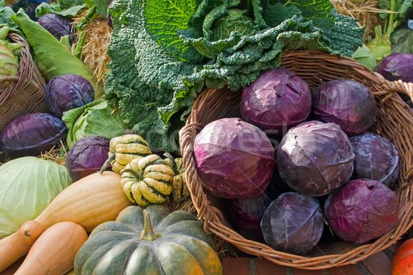 овощей еженедельно рынке продовольствие фон сельского хозяйства Сток-фото © elxeneize