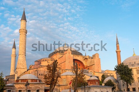 The Hagia Sophia in Istanbul Stock photo © elxeneize