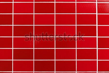 Piros csempézett kicsi csempék absztrakt terv Stock fotó © elxeneize