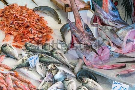 Kılıçbalığı diğer balık deniz ürünleri satış pazar Stok fotoğraf © elxeneize