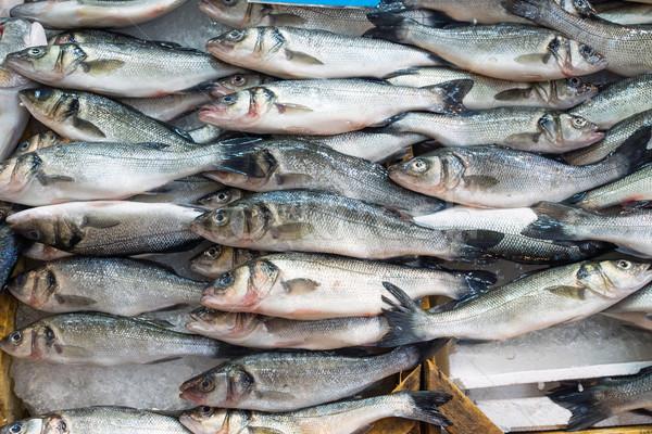 Fresh fish offer for sale Stock photo © elxeneize