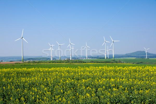 Kırsal Almanya alan doğa çiftlik yağ Stok fotoğraf © elxeneize