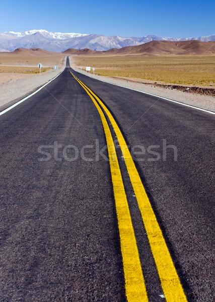 út észak Argentína vezető hegyek északi Stock fotó © elxeneize