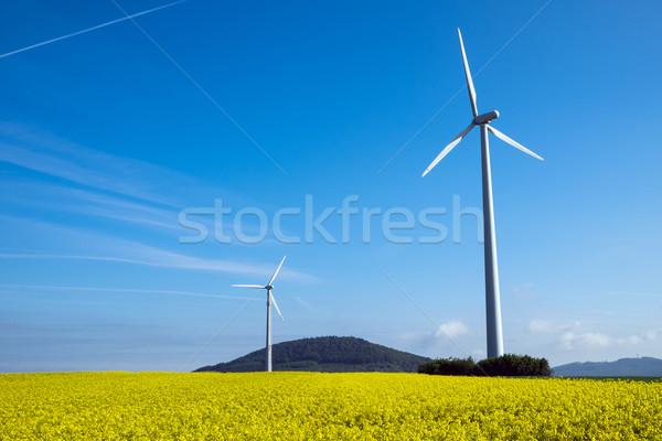 Windwheel and rapeseed in Germany Stock photo © elxeneize