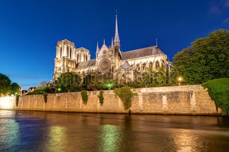 River Seine and Notre Dame  Stock photo © elxeneize