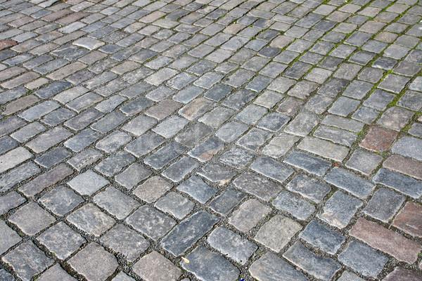 Cobble stone pavement Stock photo © elxeneize