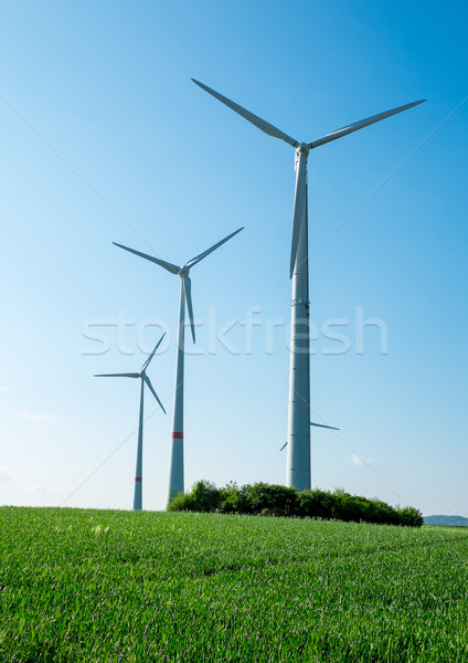Windwheels, fields and blue sky Stock photo © elxeneize