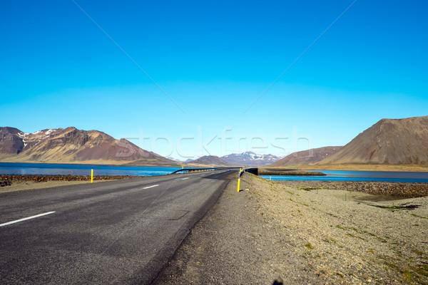 道路 半島 アイスランド 春 風景 地球 ストックフォト © elxeneize