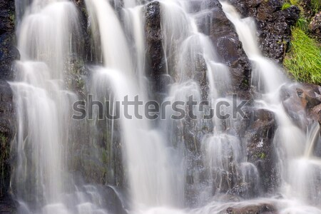Detail of a small waterfall Stock photo © elxeneize
