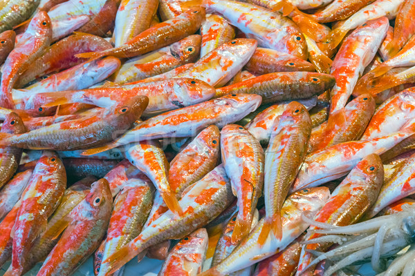 Rouge vente sicile march alimentaire poissons for Vente de poisson rouge 75008
